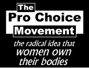 thumbnail of Pro Choice  t-shirt